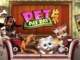 Pet Pay Day