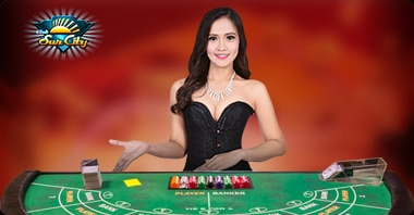 suncity casino